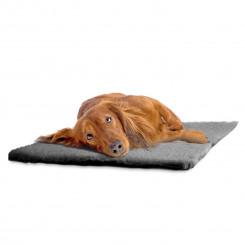 Hundentæppe 100 x 75 cm